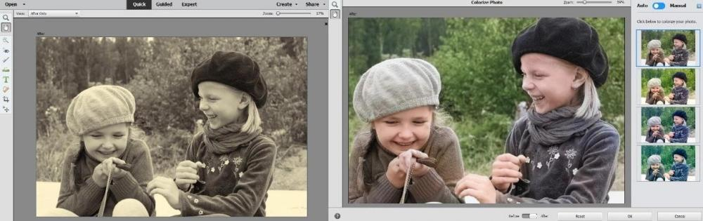 Adobe Photoshop Elements 2020 官方中文完美破解版